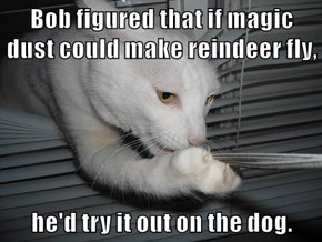 Bob figured that if magic dust could make reindeer fly,  he'd try it out on the dog.