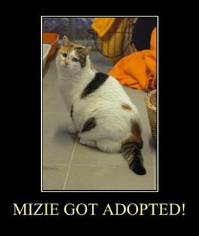 MIZIE GOT ADOPTED!
