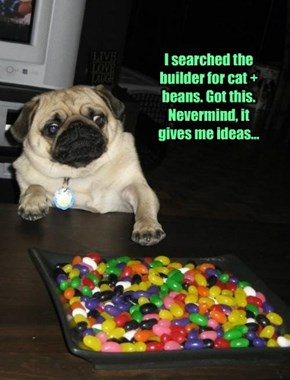 Pug is the new cat. And for green beans...