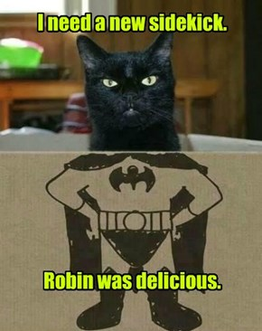 I need a new sidekick.          Robin was delicious.