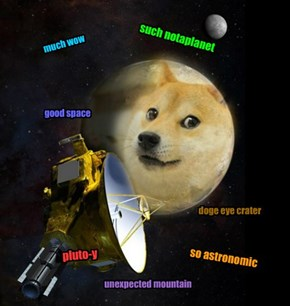 Doge discovery