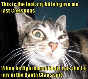 This is the look my kitteh gave me last Christmas  When he figured out that I was the fat guy in the Santa Claus suit.