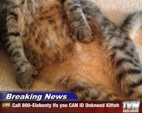 Breaking News - Call 800-Elebenty ifs yoo CAN ID Unknoed Kitteh