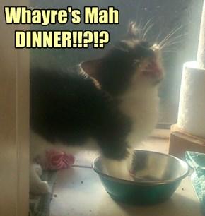 Whayre's Mah DINNER!!?!?