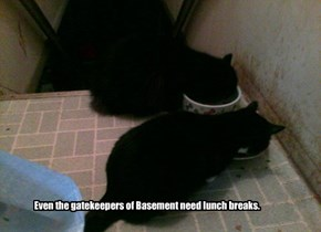 Even the gatekeepers of Basement need lunch breaks.