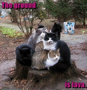The ground  is lava.