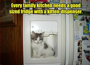 Every family kitchen needs a good sized fridge with a kitten-dispenser.