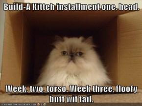 Build-A Kitteh installment one, head.  Week, two, torso. Week three, floofy butt wif tail.