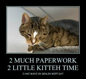 2 MUCH PAPERWORK 2 LITTLE KITTEH TIME