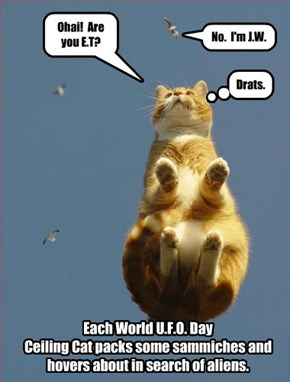 July 2nd is World U.F.O Day.