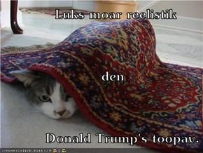 Luks moar reelistik                       den          Donald Trump's toopay.