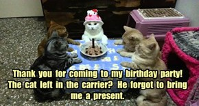Thank  you  for  coming  to  my  birthday  party!  The  cat  left  in  the  carrier?   He  forgot  to  bring  me  a  present.