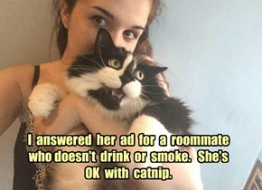 I  answered  her  ad  for  a  roommate  who doesn't  drink  or  smoke.   She's  OK  with  catnip.