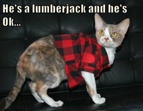 He's a lumberjack and he's Ok...