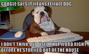 GOOGLE SAYS IT MEANS FEMALE DOG  I DON'T THINK DAD USED THAT WORD RIGHT BEFORE HE STORMED OUT OF THE HOUSE