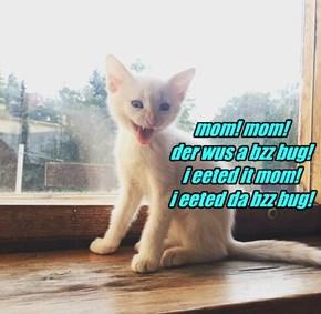mom! mom! der wus a bzz bug! i eeted it mom! i eeted da bzz bug!