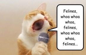 Karaoke Kat