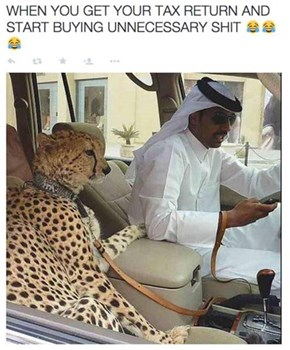 Have You Ever Felt So Wealthy You Bought A Cheetah?