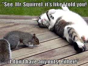 """See, Mr. Squirrel, it's like I told you!  I don't have any nuts, either!"""