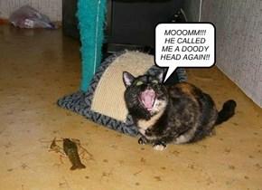MOOOMM!!! HE CALLED ME A DOODY HEAD AGAIN!!