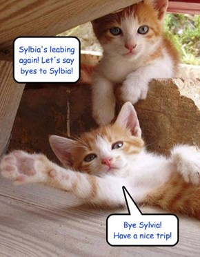 Sylbia's leabing again! Let's say byes to Sylbia