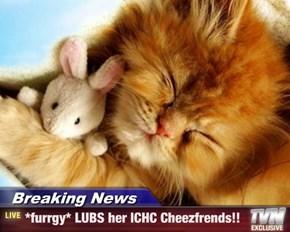 Breaking News - *furrgy* LUBS her ICHC Cheezfrends!!
