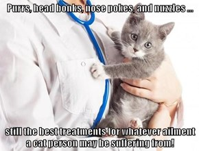 Purrs, head bonks, nose pokes, and nuzzles ...  still the best treatments for whatever ailment a cat person may be suffering from!