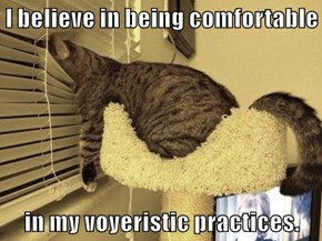I believe in being comfortable  in my voyeristic practices.
