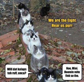 We are the Eight.  Hear us purr.