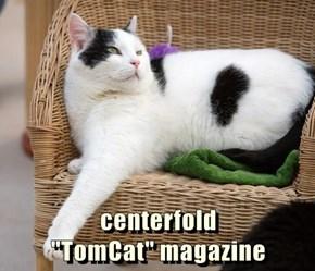 "centerfold                             ""TomCat"" magazine"
