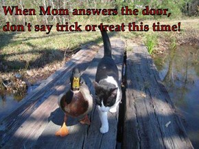When Mom answers the door, don't say trick or treat this time!