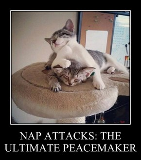 NAP ATTACKS: THE ULTIMATE PEACEMAKER