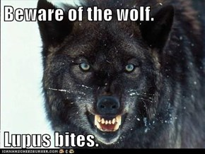 Beware of the wolf.  Lupus bites.