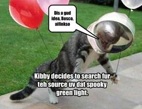 Kibby & Bosco investigate