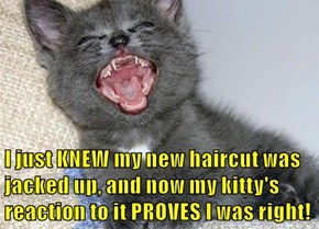 I just KNEW my new haircut was                                                              jacked up, and now my kitty's                                                             reaction to it PROVES I was right!