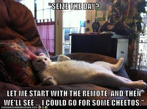 """""""SEIZE THE DAY?  LET ME START WITH THE REMOTE, AND THEN WE'LL SEE ... I COULD GO FOR SOME CHEETOS."""""""
