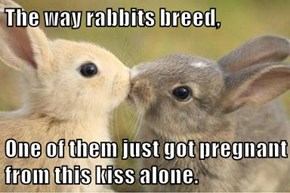The way rabbits breed,  One of them just got pregnant from this kiss alone.