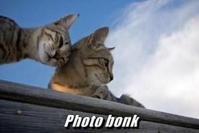 Photo bonk