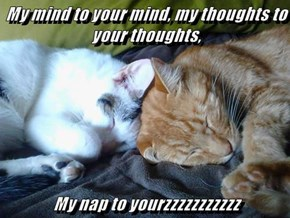 My mind to your mind, my thoughts to your thoughts,  My nap to yourzzzzzzzzzzz