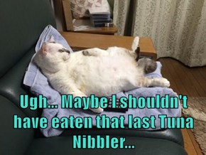 Ugh... Maybe I shouldn't have eaten that last Tuna Nibbler...