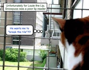 Unfortunately for Louie the Lip, Snowpuss was a poor lip reader