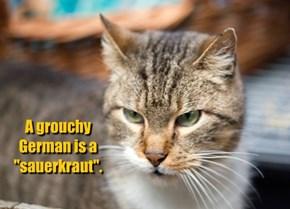 Das ist HERR Grumpy Cat!