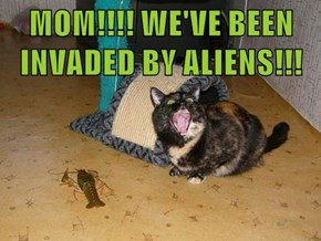 MOM!!!! WE'VE BEEN INVADED BY ALIENS!!!