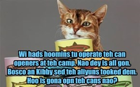Wi hads hoomins tu operate teh can openers at teh camp. Nao dey is all gon. Bosco an Kibby sed teh aliyuns tooked dem. Hoo is gona opn teh cans nao?