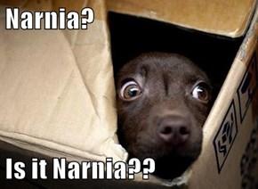 Narnia?  Is it Narnia??