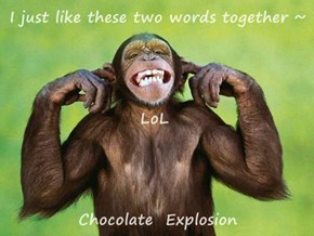 I just like these two words together ~                       LoL Chocolate  Explosion