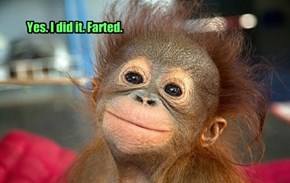 Yes. I did it. Farted.