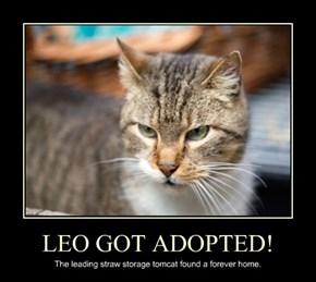 LEO GOT ADOPTED!