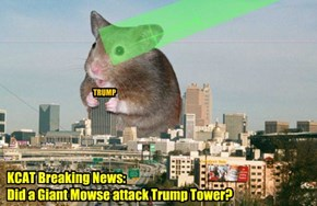 "KCAT BREAKING NEWS - New Kat City attacked by an enormous mowse or was it all just a mass halucinashun? Mayor Linseed says: ""This could not be a giant mouse because it could not be found when police were sent to the scene."""