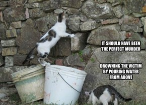 IT SHOULD HAVE BEEN THE PERFECT MURDER   DROWNING THE VICTIM BY POURING WATER FROM ABOVE